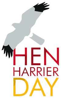 Hen Harrier Day